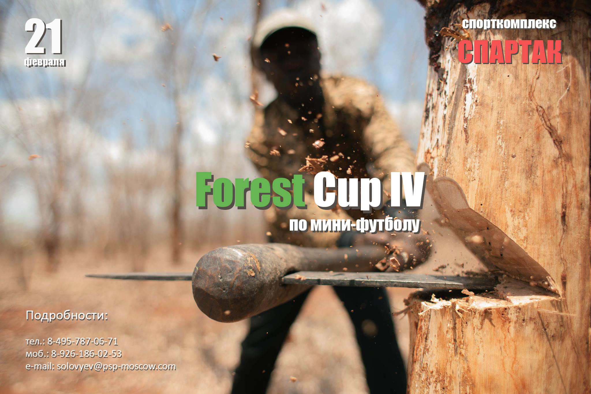 Forest cup IV